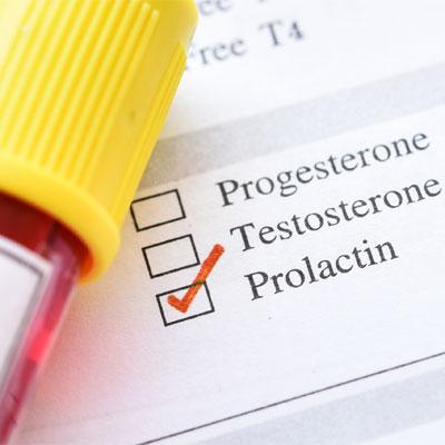 Prolactin Hormone Function