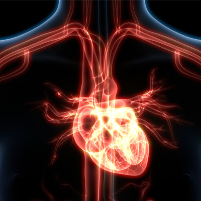 Testosterone hormone for Heart Health